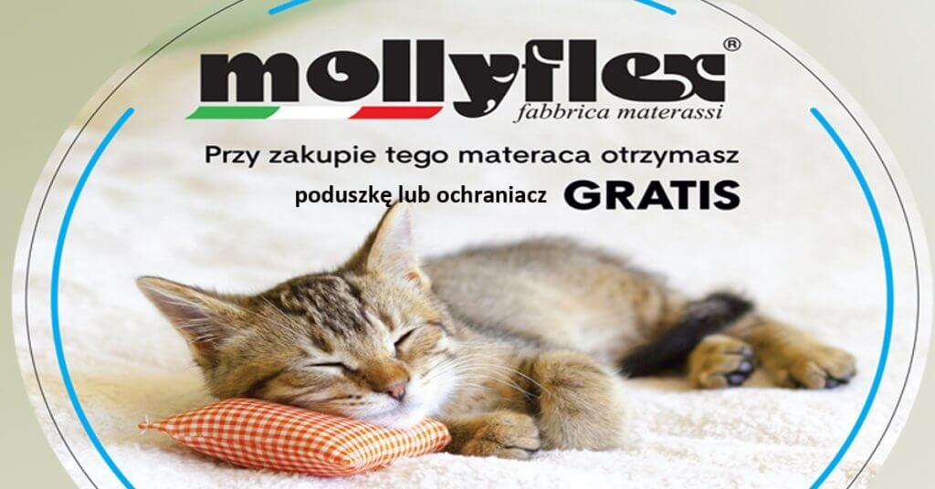 baner-facebook-promocja-gratisowa-Mollyflex-jesien-2019-002-1024×536